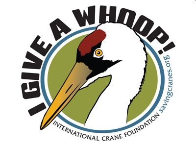 Whooping Crane Interactive Exploration Station